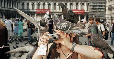 © Martin Parr Magnum Photos Rocket Gallery (8) – Кредит: © Martin Parr / Magnum Photos / Rocket Gallery - Венеция, Италия, 2005.